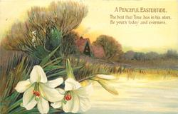 A PEACEFUL EASTERTIDE  lilies, water, cottage, trees