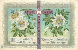 MAY EASTER PEACE ABIDE WITH YOU!  decorated red cross, passion flower