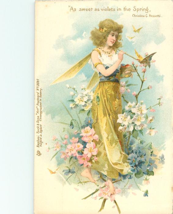 fairy & butterfly