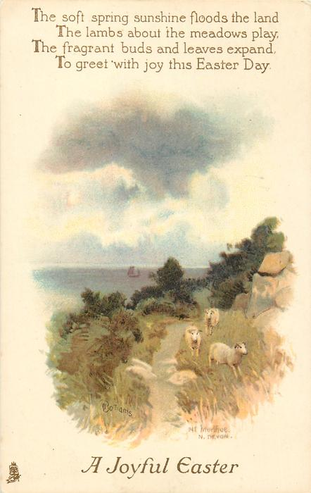 A JOYFUL EASTER  sheep by path