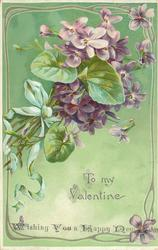 TO MY VALENTINE bunch of vioets, green ribbon