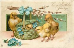 LOVING BIRTHDAY GREETINGS four chicks, one in basket