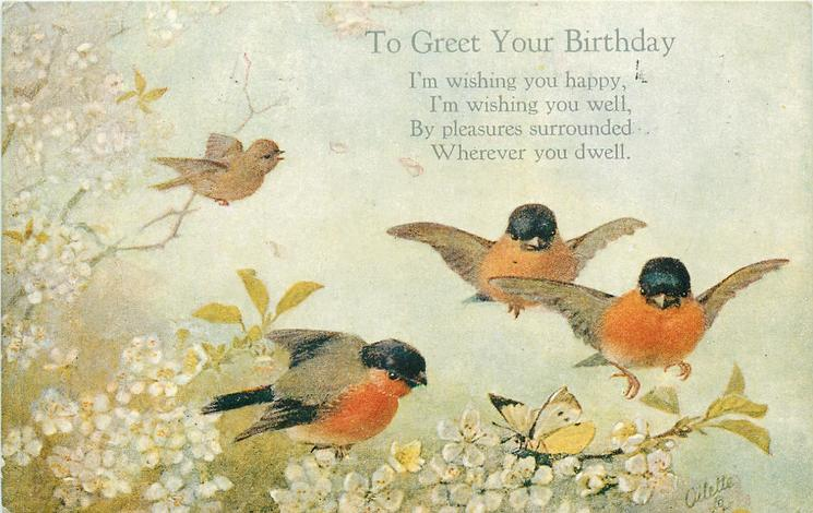 TO GREET YOUR BIRTHDAY  four red-breasted birds, blossom & butterflies
