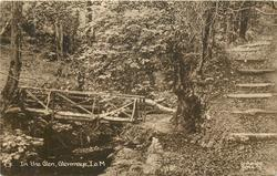 IN THE GLEN bridge and path