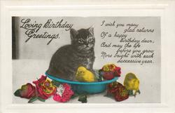 LOVING BIRTHDAY GREETINGS  cat in blue bowl, two chicks & roses