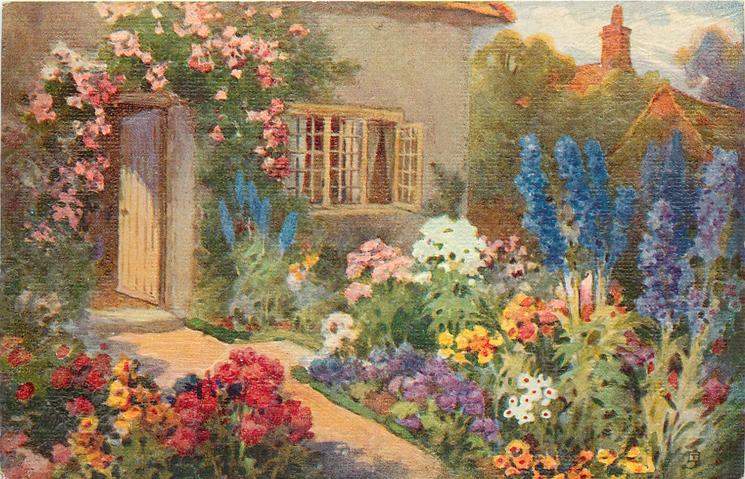 blue delphiniums right and tulips left of path leading to cottage with open window & door