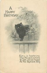 A HAPPY BIRTHDAY  black cat on fence