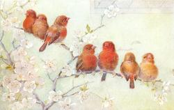 three orange birds on upper branch, four orange birds on lower branch