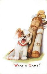 """""""WHAT A GAME!""""  puppy yawns widely, leaning against two golf bags"""