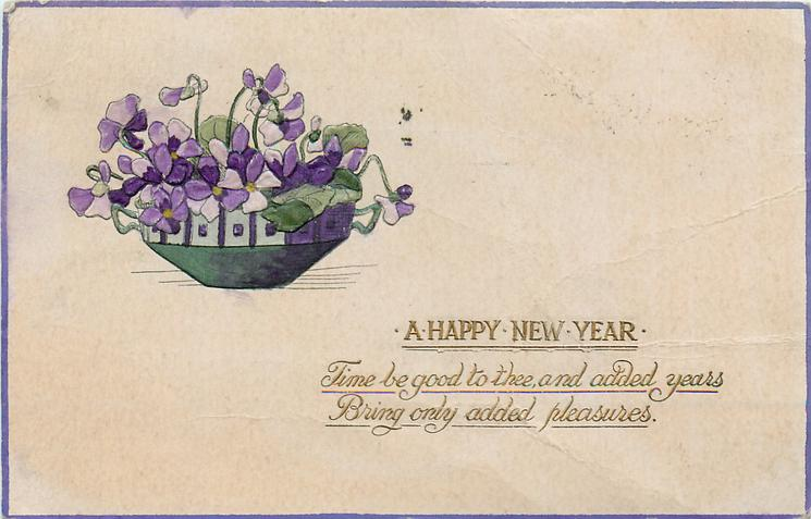 A HAPPY NEW YEAR  violets