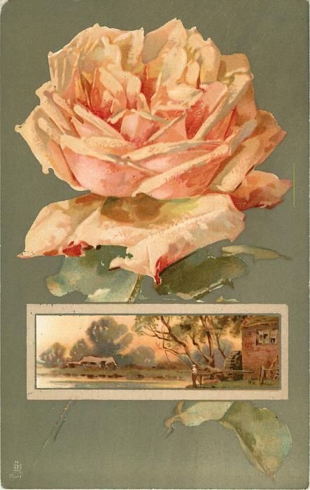 orange/yellow rose above oblong inset of country scene with watermill to right