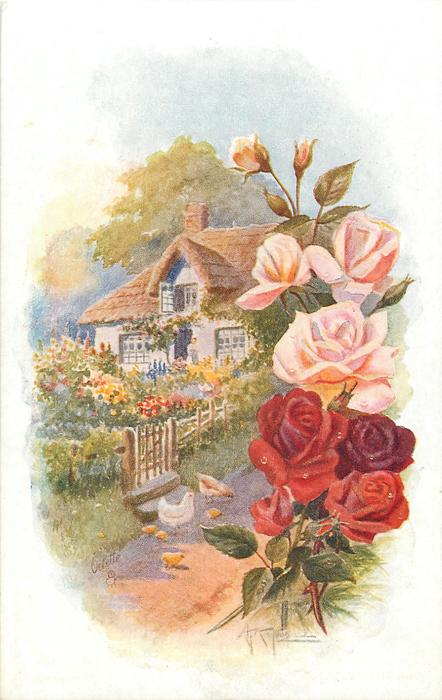 cottage with fence in front, two chickens and four chicks on path, roses border right