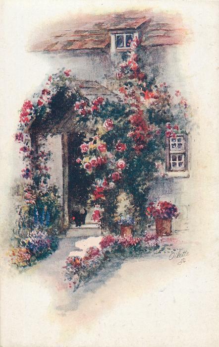cat stands in open doorway, flowers on either side of path, roses around and over door