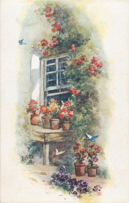 four flowerpots on table in front of open window, three butterflies