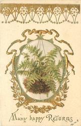 MANY HAPPY RETURNS silk insert of fern hanging in mossy basket