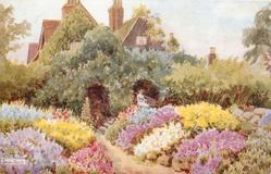 SPRING FLOWERS - WIGGIE, REDHILL