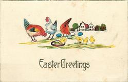 EASTER GREETINGS  rooster, two hens & four chicks