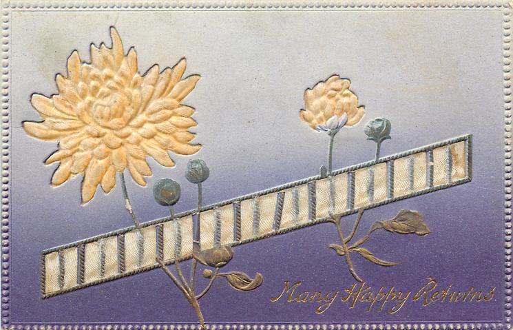 MANY HAPPY RETURNS  ribbon across card, light gold mums, blue/white background