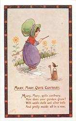 MARY, MARY, QUITE CONTRARY  verse