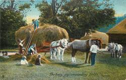 THE BUSY, JOY - RESOUNDING FIELDS