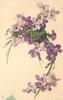 purple violets-mainly at top & right of card