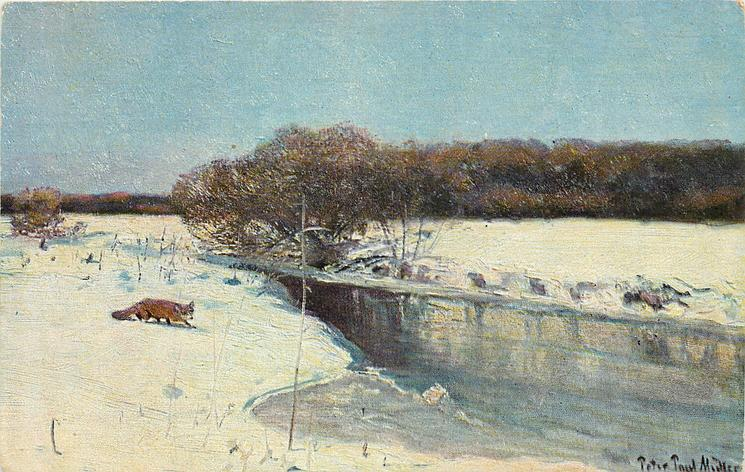 fox in snowy landscape