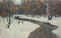 snowy scene, two deer left of stream, birch trees surround