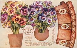 PURPLE AND GOLD PANSIES