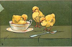 three chicks, two stand watching another in cup, spoon in front