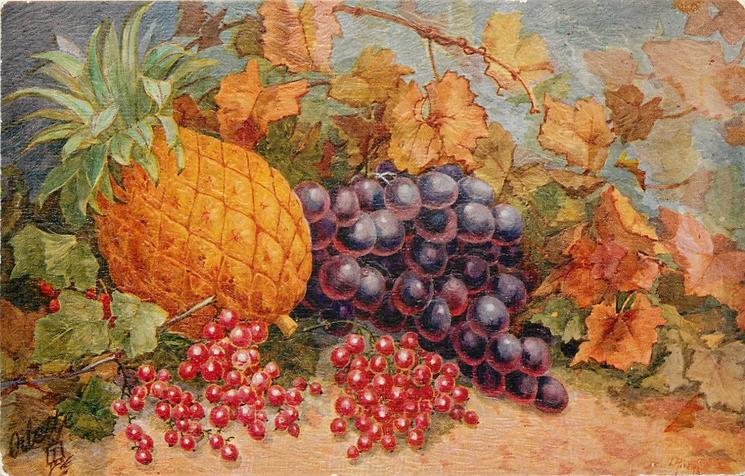 red currants left foreward, pineapple behind, purple grapes right