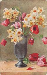 yellow/orange narcissi, red tulips, red anemones in grey vase