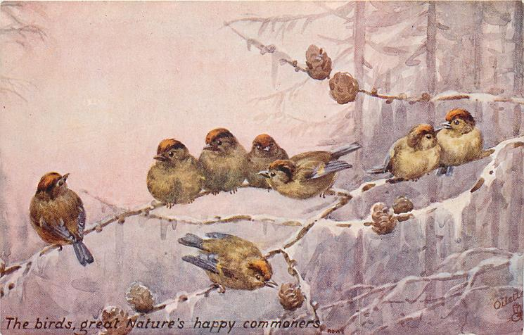 THE BIRDS, GREAT NATURE'S HAPPY COMMONERS. quote ROWE