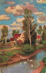 farm house behind silver birch and other trees, ducks in stream