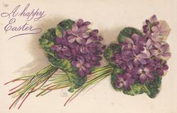 two vertical bunches of purple violets, stalks right