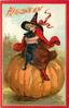 pretty witch sits, hugging black cat, on giant pumpkin