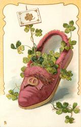 pink slipper with furry trim, containing 4 leaf clovers