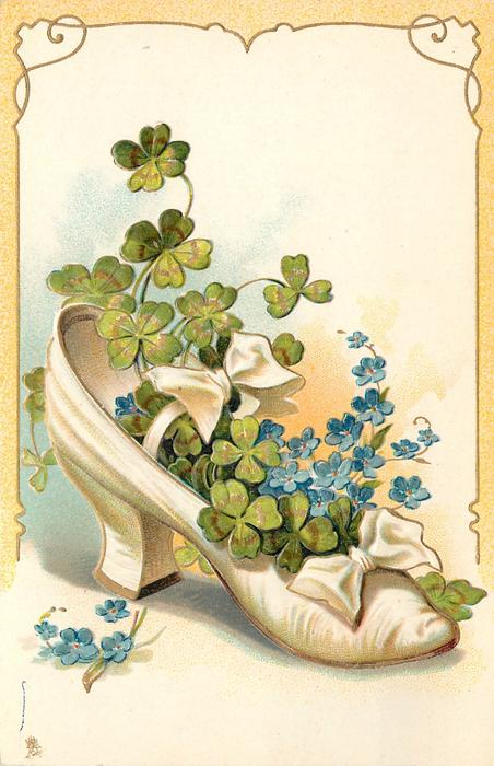 white shoe containing  4 leaf clovers and forget-me-nots
