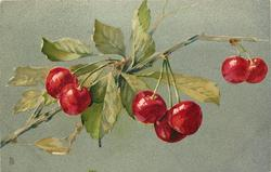 cherry branch, two cherries, then three, then two