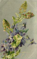stems lower left, purple violets in bunch, three mignonette spikes above