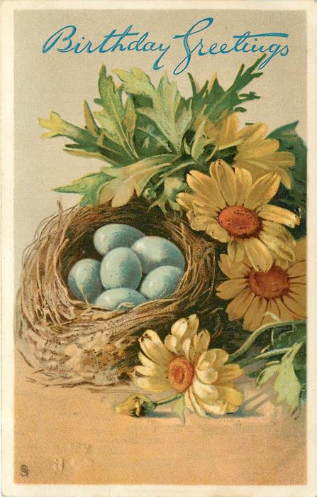nest with six blue eggs and yellow daisies, with orange centres, beside