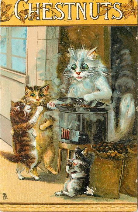 CHESTNUTS  cat serving cooked chestnuts to kittens