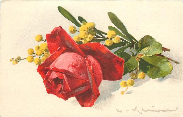 one large red rose, two stems to right, yellow flowers above and right