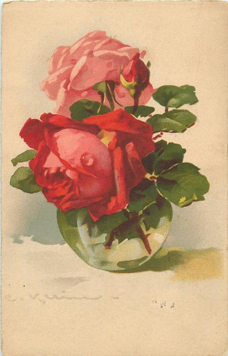 one red  one pink roses  u0026 bud in clear glass vase