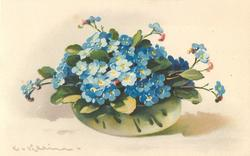 blue forget-me-nots in clear glass bowl
