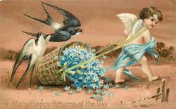 MANY HAPPY RETURNS OF THE DAY  blue gowned cupid pulls basket of forget-me-nots, two swallows