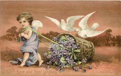 WITH LOVE AND BEST WISHES or w/o greetings, mauve gowned cupid pulls basket of violets, two doves