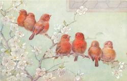 seven red birds on blossom branches