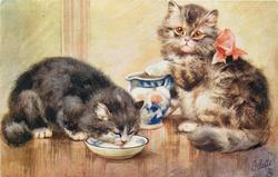 tabby cat sitting with pink bow right with foot on pitcher, black cat left drinking milk from saucer
