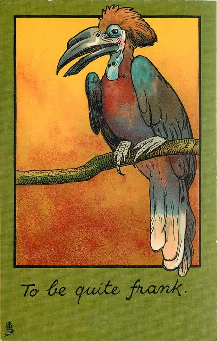 TO BE QUITE FRANK  toucan