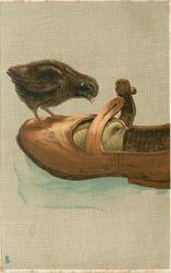 two chicks one sits in shoe, the other stands on the toe